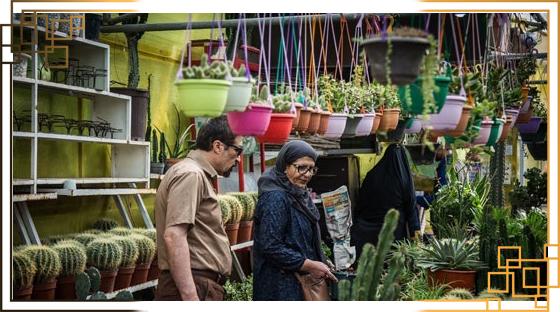 گلدان پلاستیکی تهران