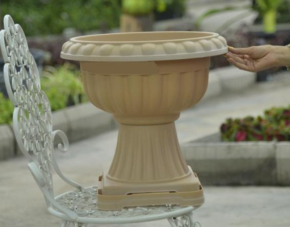 leggy plastic pot